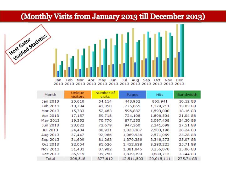 (Monthly Visits from January 2013 till December 2013)