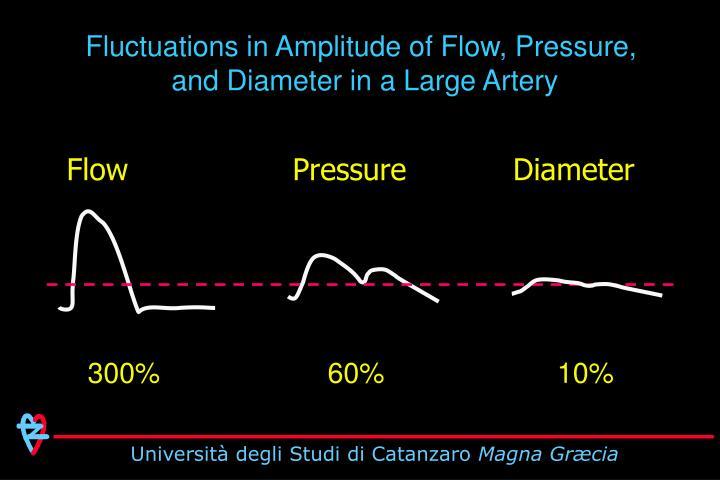 Fluctuations in Amplitude of Flow, Pressure,