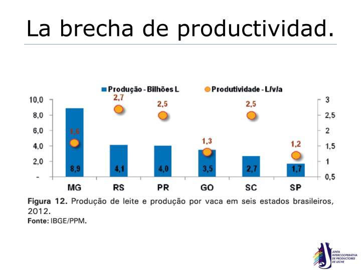 La brecha de productividad.