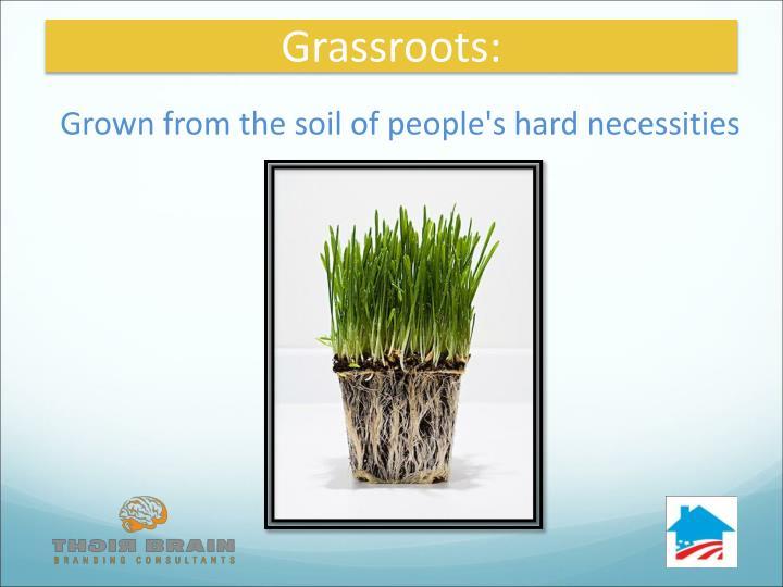 Grassroots: