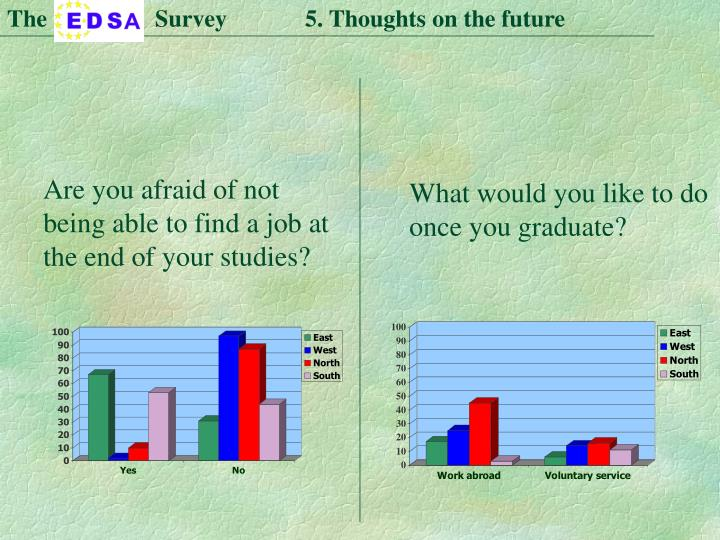 The                  Survey             5. Thoughts on the future