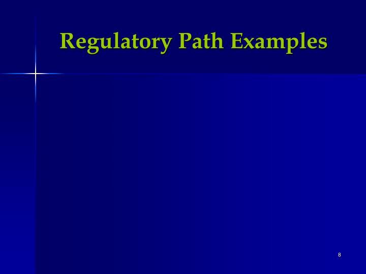 Regulatory Path Examples