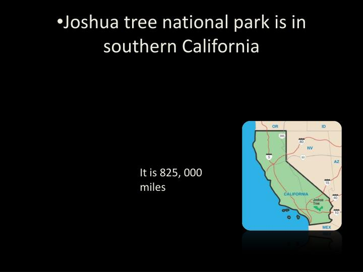 Joshua tree national park is in southern c alifornia