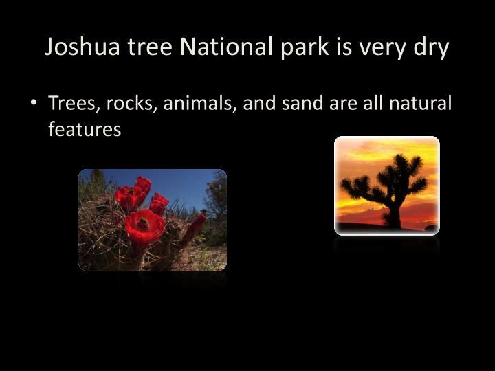 Joshua tree national park is very dry