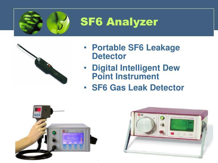 SF6 Analyzer