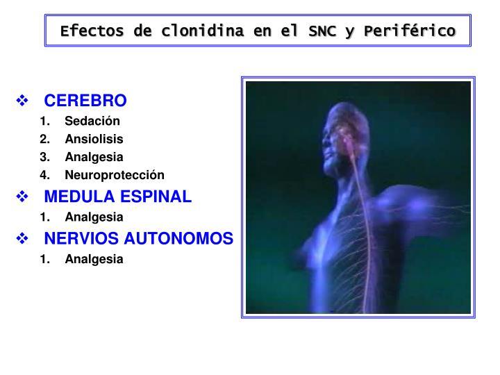 Efectos de clonidina en el SNC y Periférico