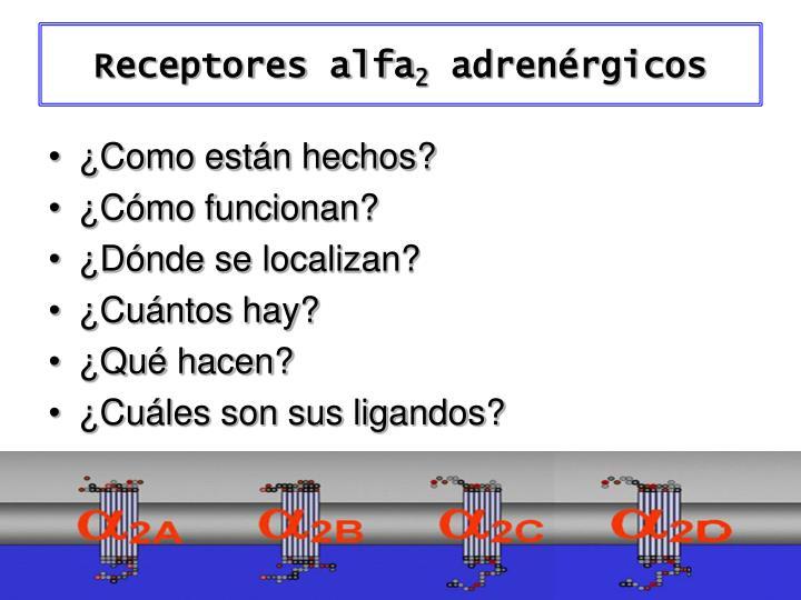 Receptores alfa