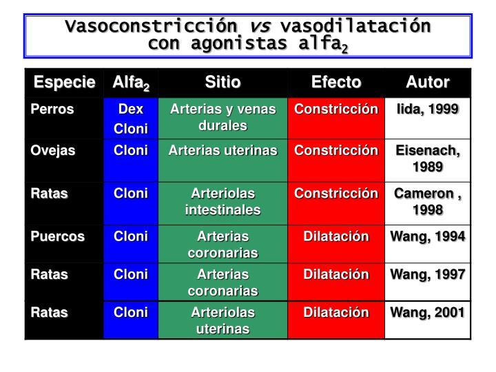 Vasoconstricción