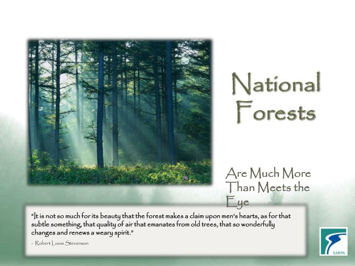 national forests n.