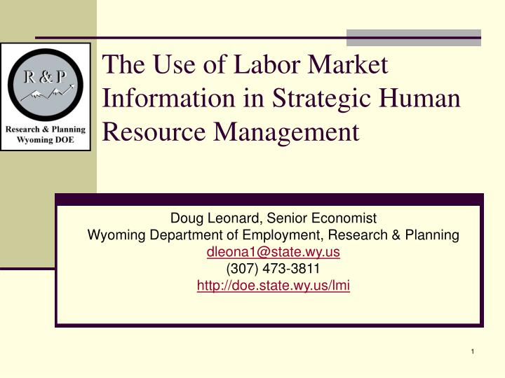the use of labor market information in strategic human resource management n.