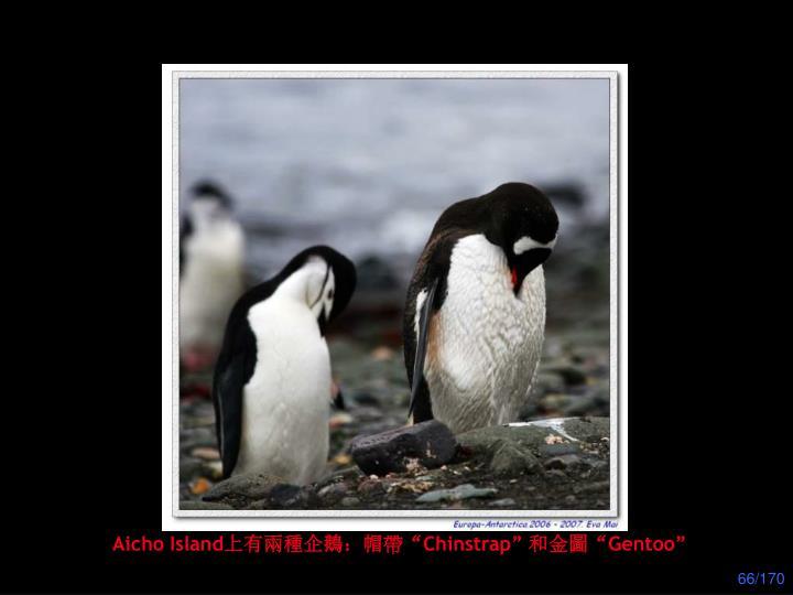 Aicho Island