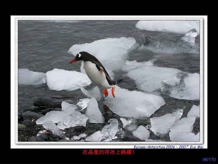 在晶瑩的浮冰上跳躍