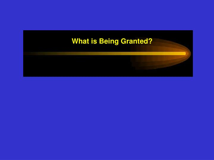 What is Being Granted?