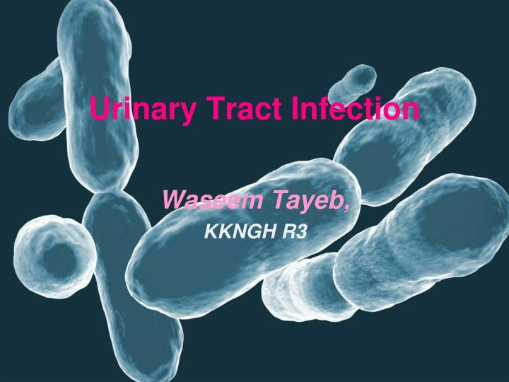 urinary tract infection n.