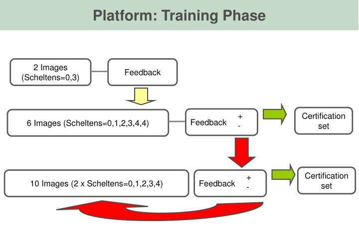 Platform: Training Phase