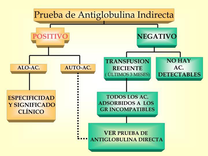 Prueba de Antiglobulina Indirecta