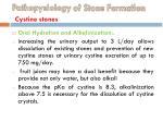 pathopysiology of stone formation cystine stones4