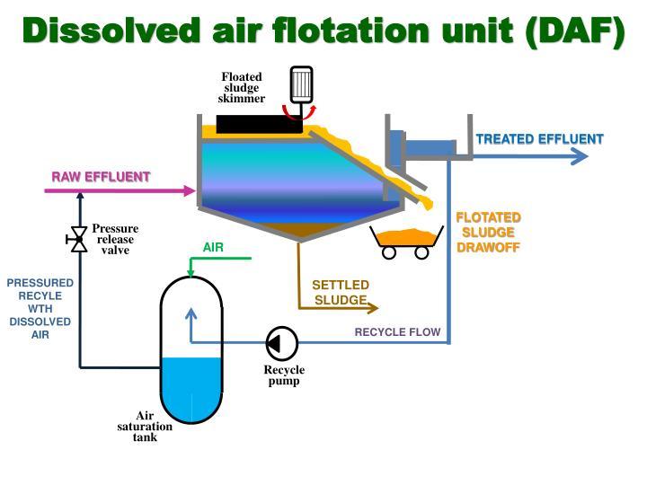 Dissolved air flotation unit