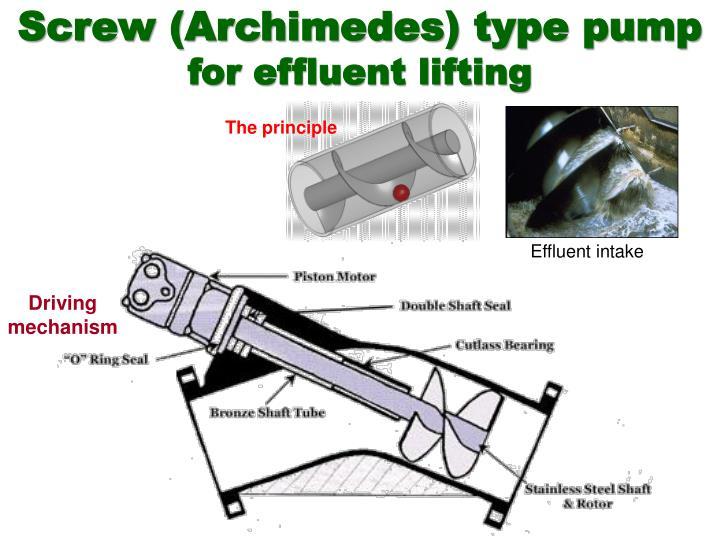 Screw (Archimedes) type pump
