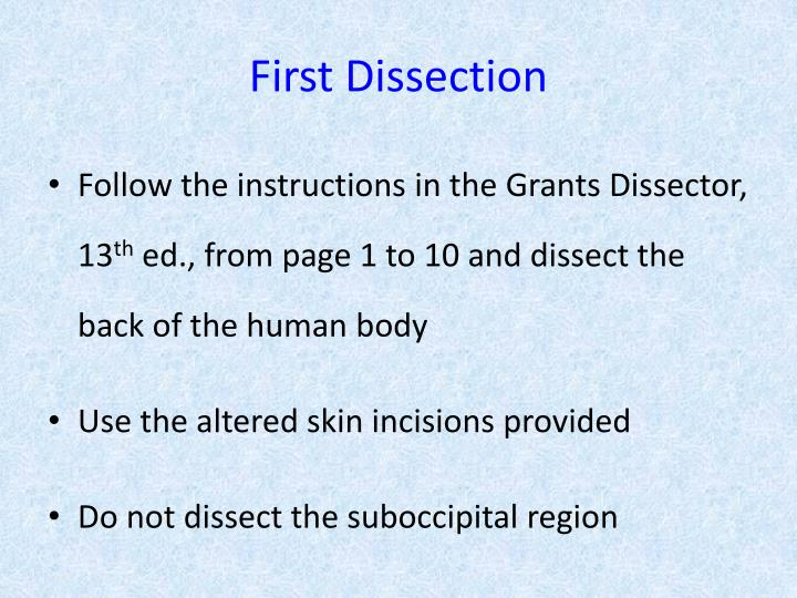 First Dissection