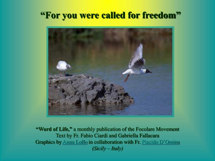 """""""For you were called for freedom"""""""