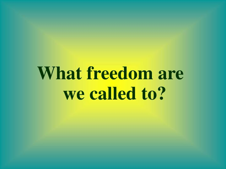 What freedom are we called to?