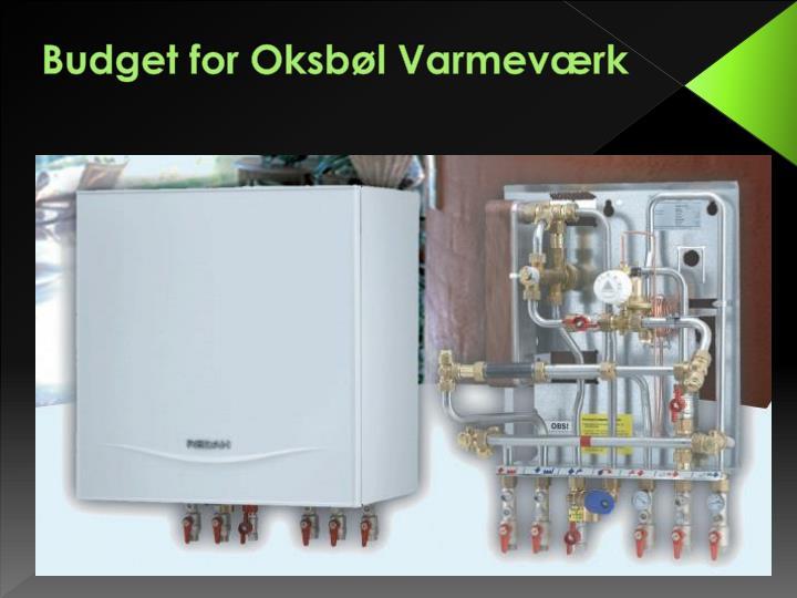 Budget for Oksbøl Varmeværk