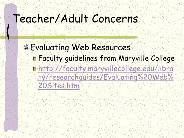 Teacher/Adult Concerns