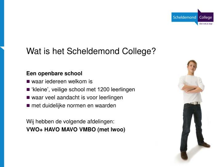Wat is het Scheldemond College?