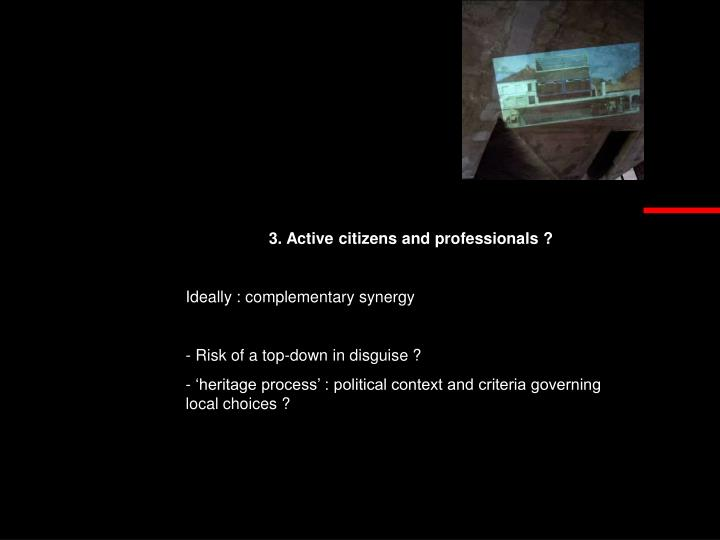 3. Active citizens and professionals ?