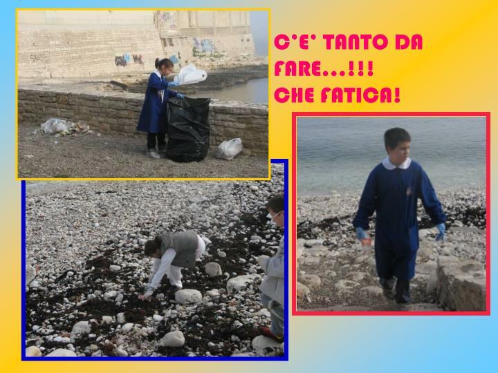 C'E' TANTO DA FARE…!!!