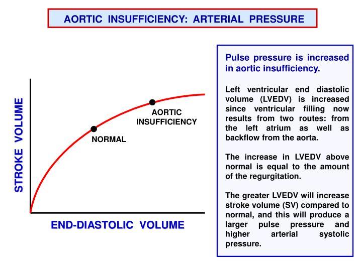 AORTIC  INSUFFICIENCY:  ARTERIAL  PRESSURE