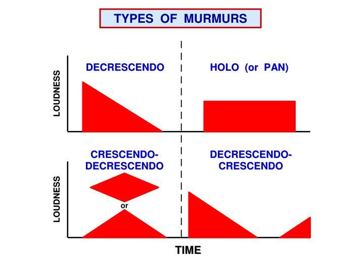 TYPES  OF  MURMURS