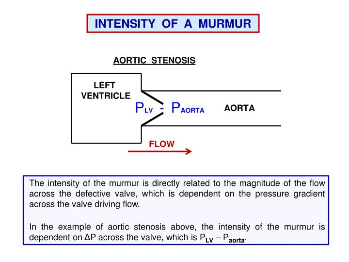 INTENSITY  OF  A  MURMUR