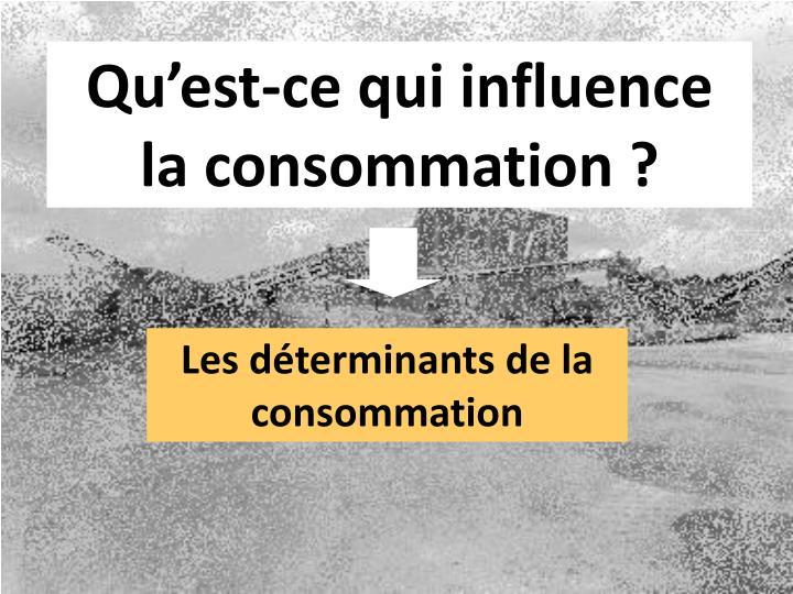 Qu'est-ce qui influence la consommation ?