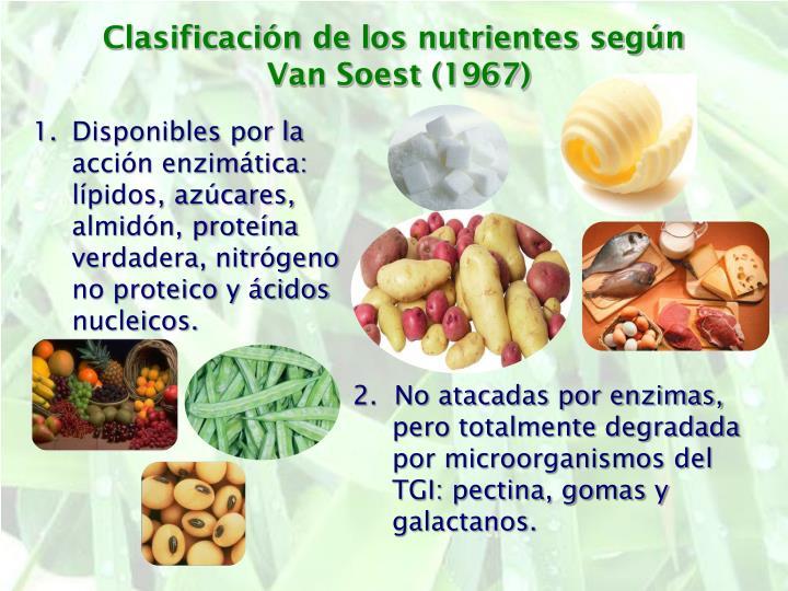 Clasificación de los nutrientes según
