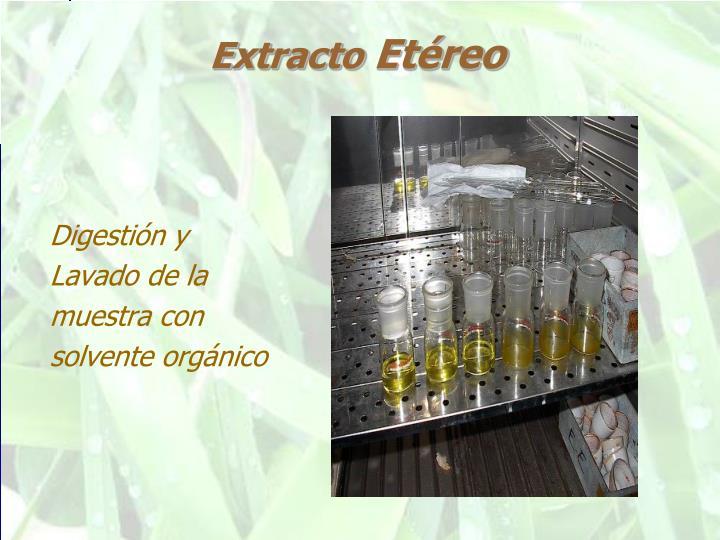Extracto