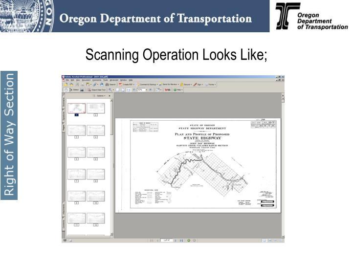 Scanning Operation Looks Like;