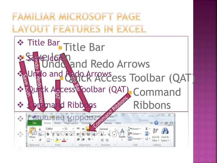 Familiar Microsoft page layout features in Excel