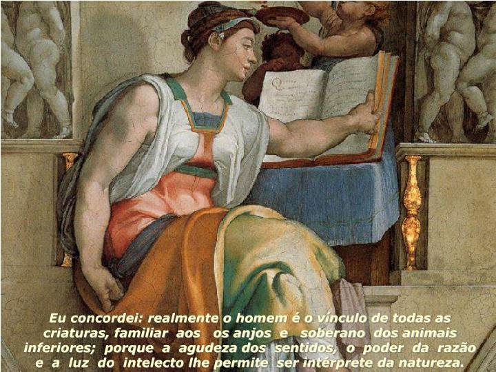Eu concordei: realmente o homem é o vínculo de todas as criaturas, familiar  aos   os anjos  e   s...