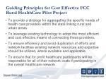 guiding principles for cost effective fcc rural healthcare pilot project