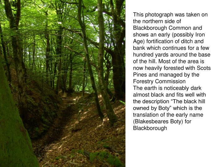 This photograph was taken on the northern side of Blackborough Common and shows an early (possibly Iron Age) fortification of ditch and bank which continues for a few hundred yards around the base of the hill. Most of the area is now heavily forested with Scots Pines and managed by the Forestry Commission