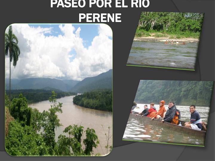 PASEO POR EL RIO PERENE
