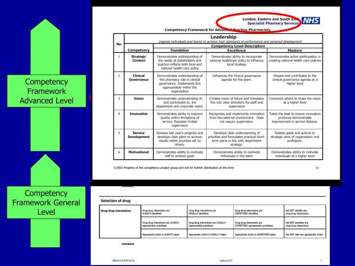 Competency Framework Advanced Level