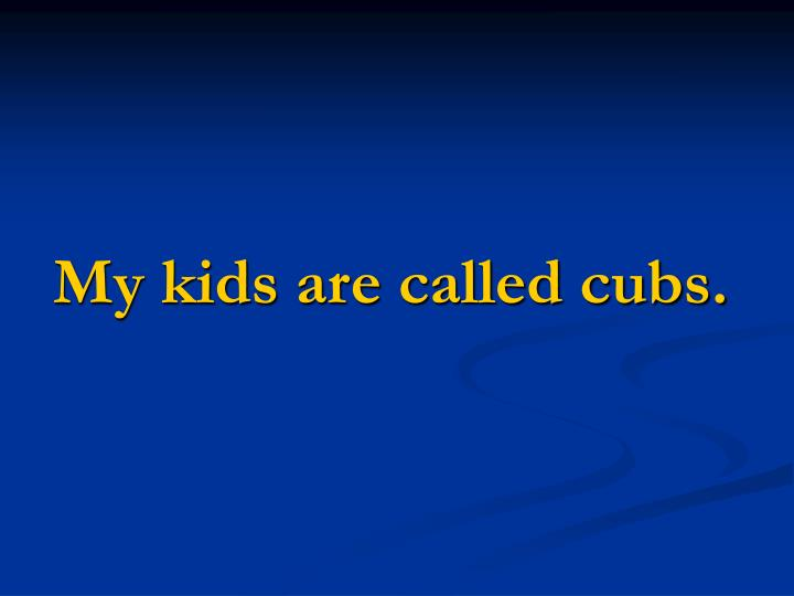 My kids are called cubs.