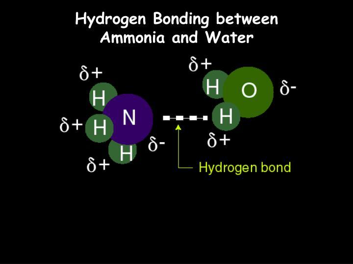 Hydrogen Bonding between