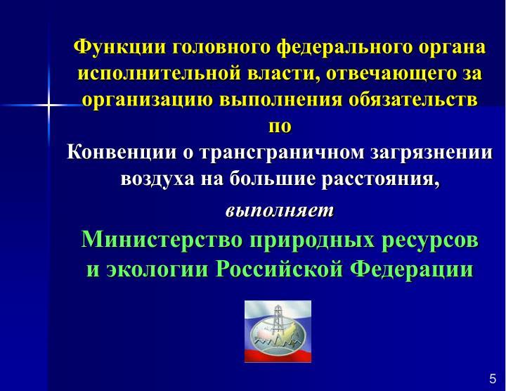 Функции головного федерального органа исполнительной власти, отвечающего за организацию выполнения обязательств