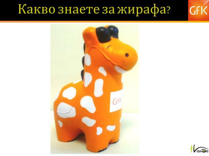 Какво знаете за жирафа?