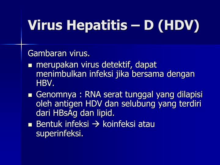 Virus Hepatitis – D (HDV)