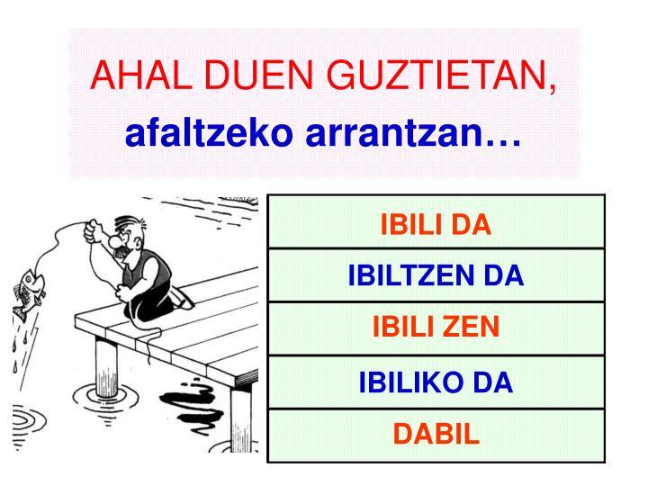 IBILI DA